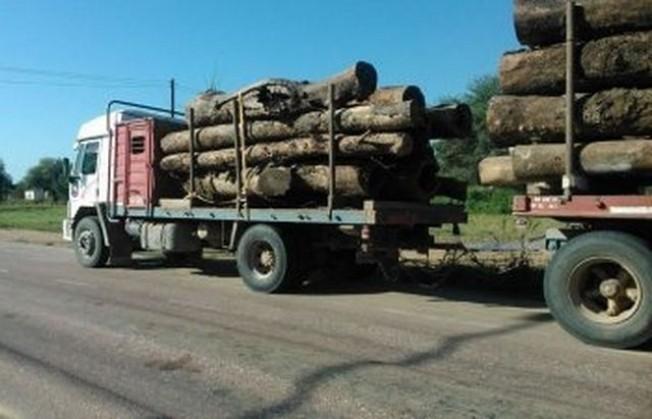 Fuerte Esperanza: secuestran 27 toneladas de quebracho