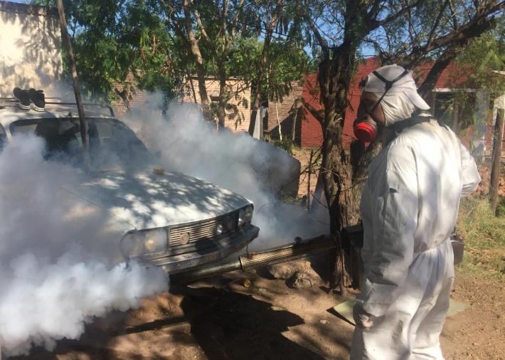 Ascienden a 2.453 los casos de dengue en Chaco: 46 nuevos positivos en un día