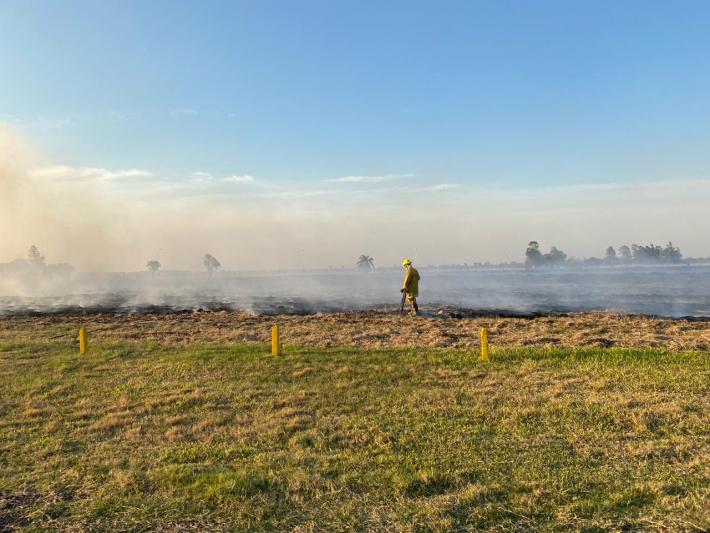 Recomendaciones de Bomberos ante la llegada de la temporada de incendios forestales