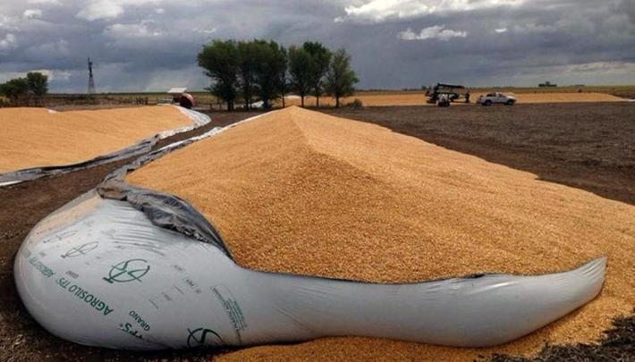 Rotura de silobolsas: ya fueron dañadas 5.700 toneladas, denuncian entidades agropecuarias