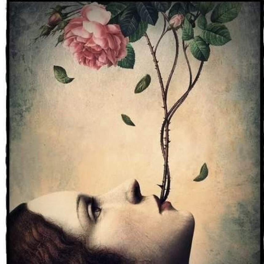 LA MUERTE AJENA. Por Noelia Barchuk